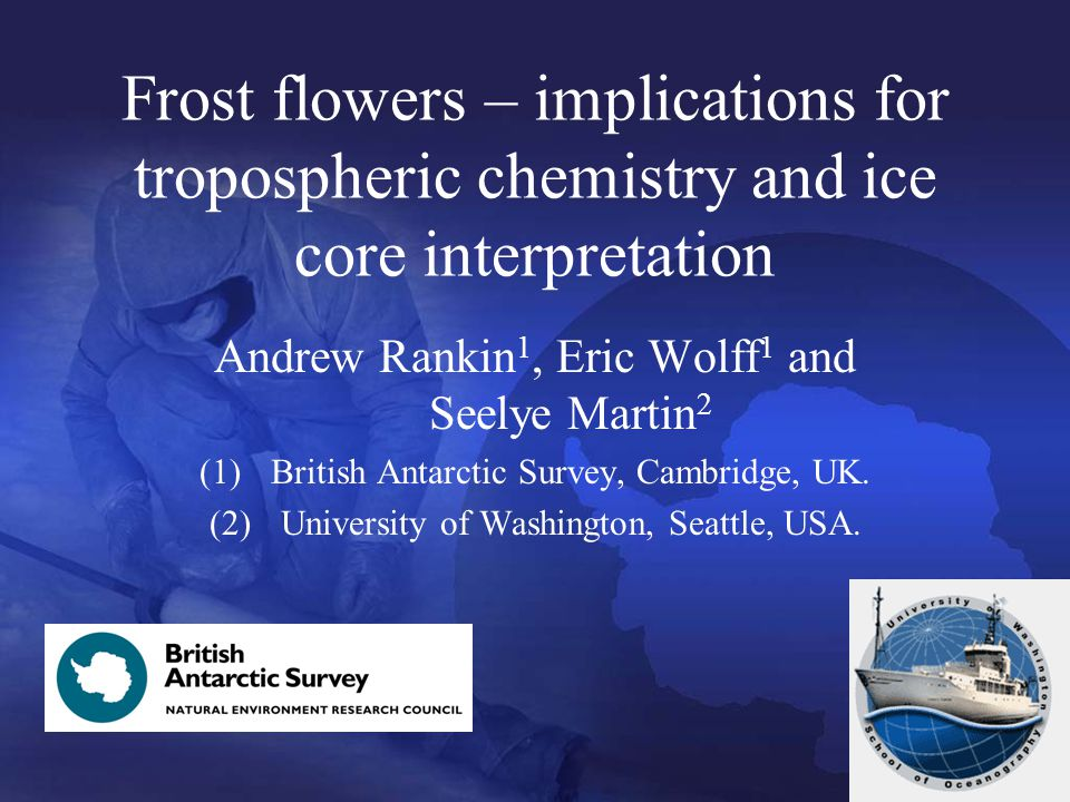 Frost flowers – implications for tropospheric chemistry and ice core interpretation Andrew Rankin 1, Eric Wolff 1 and Seelye Martin 2 (1)British Antarctic Survey, Cambridge, UK.