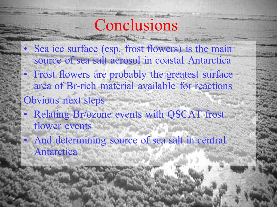 Conclusions Sea ice surface (esp.