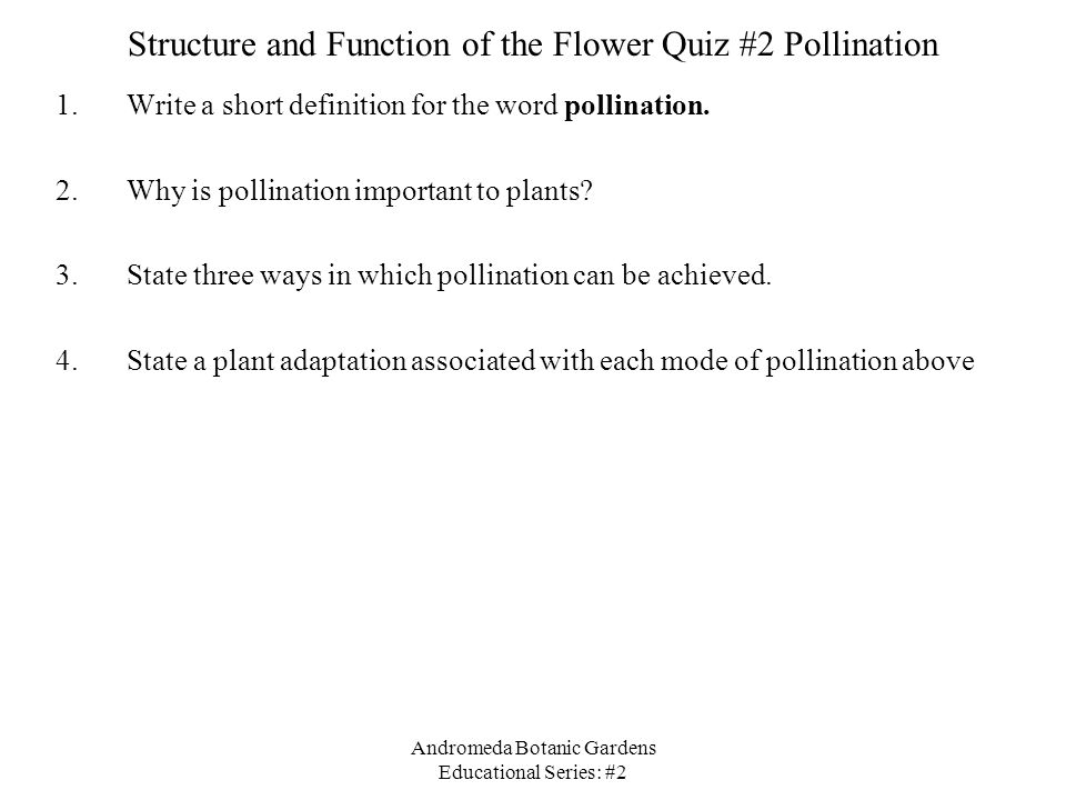 Andromeda Botanic Gardens Educational Series: #2 Structure and Function of the Flower Quiz #2 Pollination 1.Write a short definition for the word pollination.