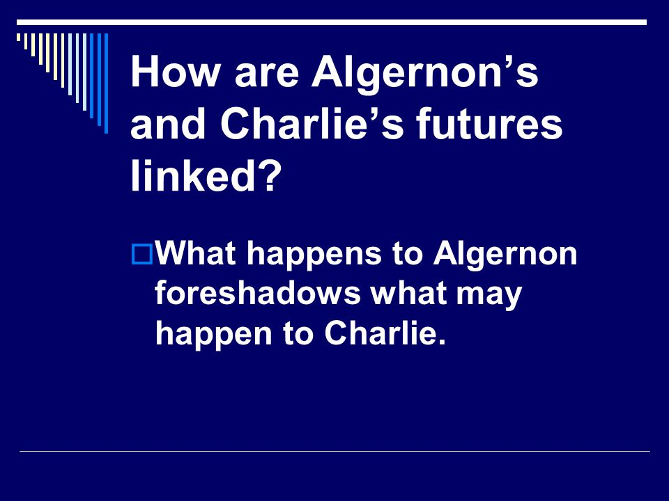 How are Algernons and Charlies futures linked? What happens to Algernon foreshadows what may happen to Charlie.