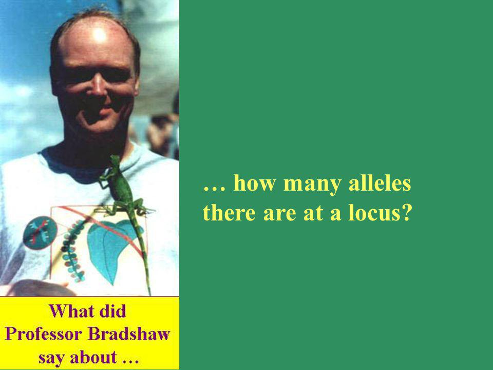 … how many alleles there are at a locus?