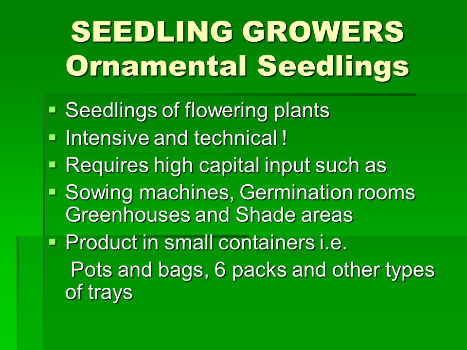 SEEDLING GROWERS Ornamental Seedlings Seedlings of flowering plants Seedlings of flowering plants Intensive and technical .