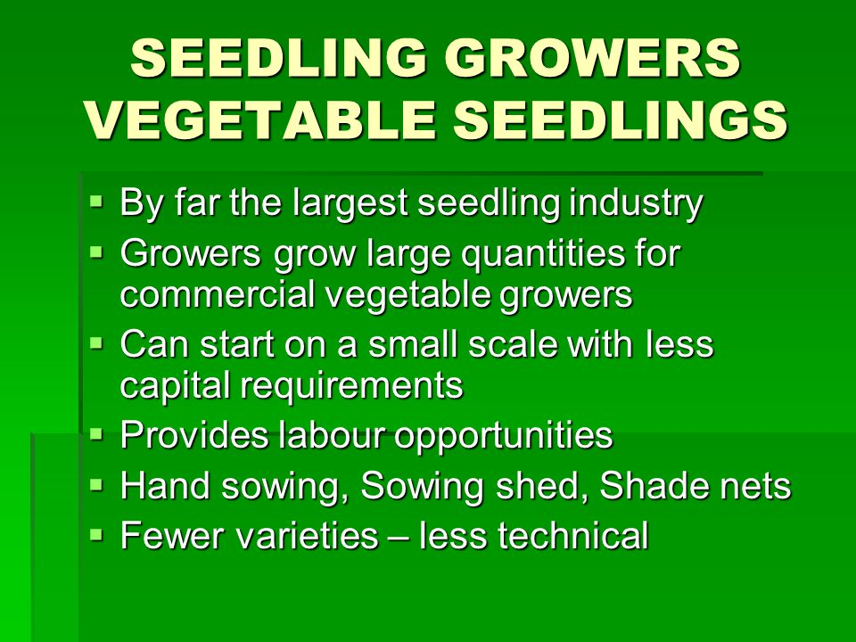 SEEDLING GROWERS VEGETABLE SEEDLINGS By far the largest seedling industry By far the largest seedling industry Growers grow large quantities for commercial vegetable growers Growers grow large quantities for commercial vegetable growers Can start on a small scale with less capital requirements Can start on a small scale with less capital requirements Provides labour opportunities Provides labour opportunities Hand sowing, Sowing shed, Shade nets Hand sowing, Sowing shed, Shade nets Fewer varieties – less technical Fewer varieties – less technical