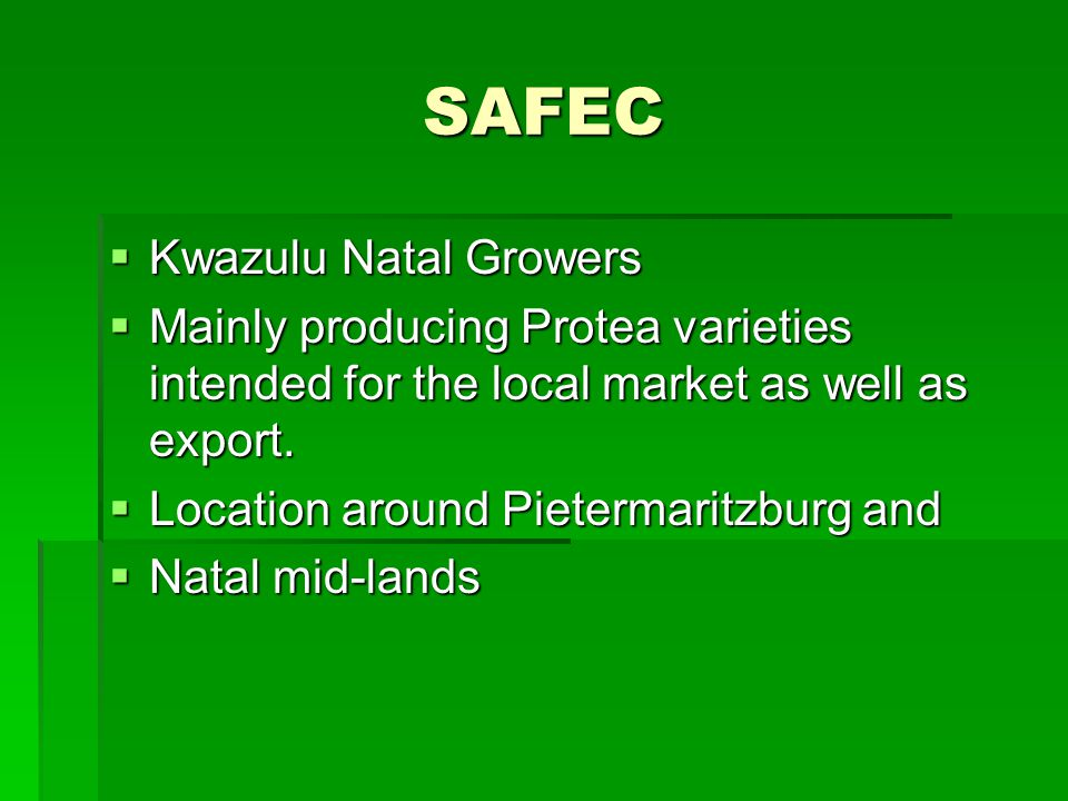 SAFEC South African Flower Growers Assoction South African Flower Growers Assoction Growers mainly centred around Jhb but also in Mpumalamga and Limpopo as well as in the Free State Growers mainly centred around Jhb but also in Mpumalamga and Limpopo as well as in the Free State Main products are Roses, Chrysanthemum, Carnation and other seed grown flowers Main products are Roses, Chrysanthemum, Carnation and other seed grown flowers