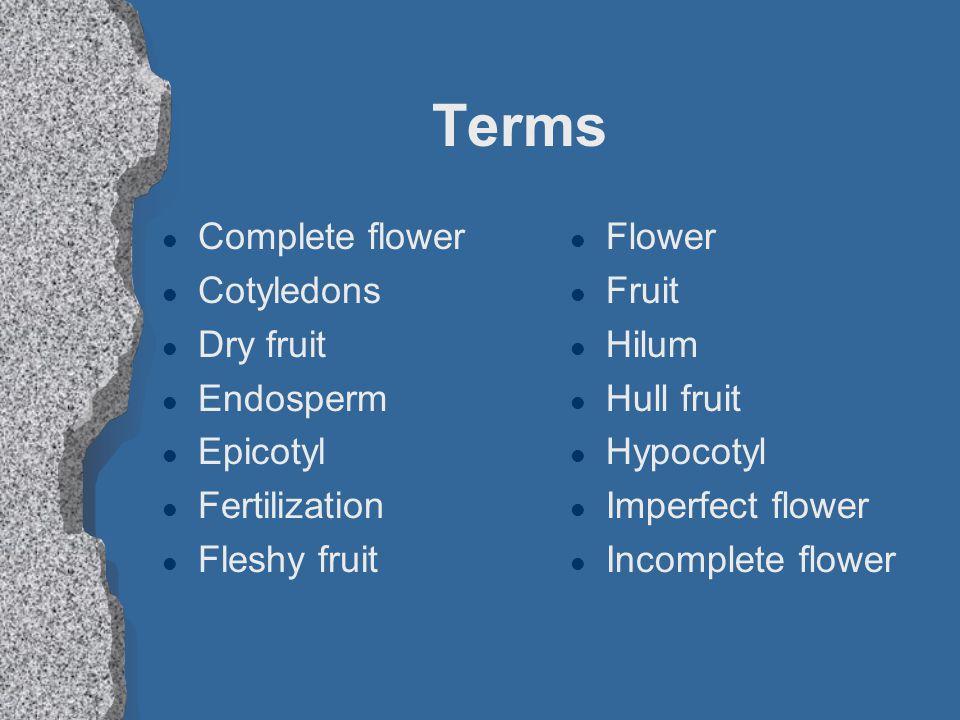 Terms l Complete flower l Cotyledons l Dry fruit l Endosperm l Epicotyl l Fertilization l Fleshy fruit l Flower l Fruit l Hilum l Hull fruit l Hypocot