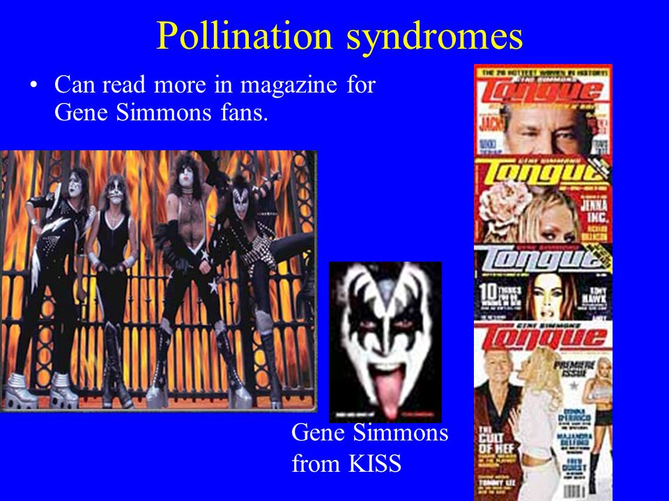Pollination syndromes Can read more in magazine for Gene Simmons fans. Gene Simmons from KISS