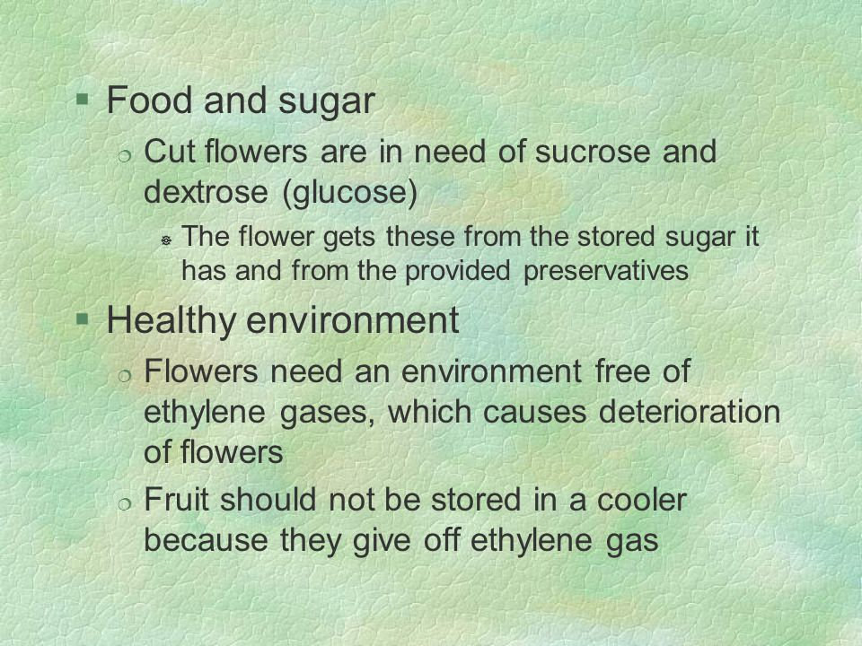 §Food and sugar ¦ Cut flowers are in need of sucrose and dextrose (glucose) ] The flower gets these from the stored sugar it has and from the provided