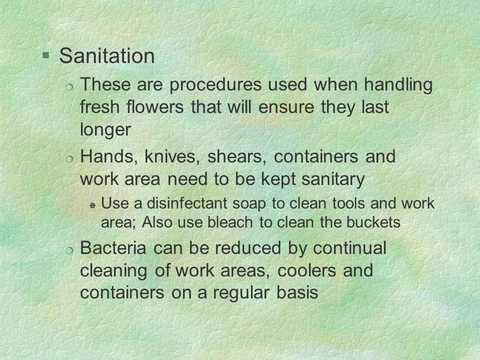 §Sanitation ¦ These are procedures used when handling fresh flowers that will ensure they last longer ¦ Hands, knives, shears, containers and work are