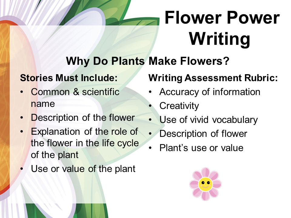 Stories Must Include: Common & scientific name Description of the flower Explanation of the role of the flower in the life cycle of the plant Use or value of the plant Writing Assessment Rubric: Accuracy of information Creativity Use of vivid vocabulary Description of flower Plants use or value Flower Power Writing Why Do Plants Make Flowers?
