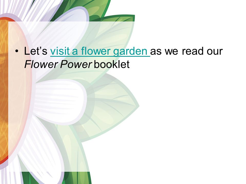 Lets visit a flower garden as we read our Flower Power bookletvisit a flower garden