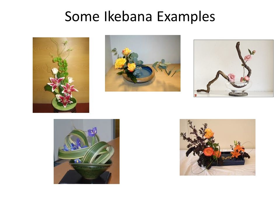 Some Ikebana Examples
