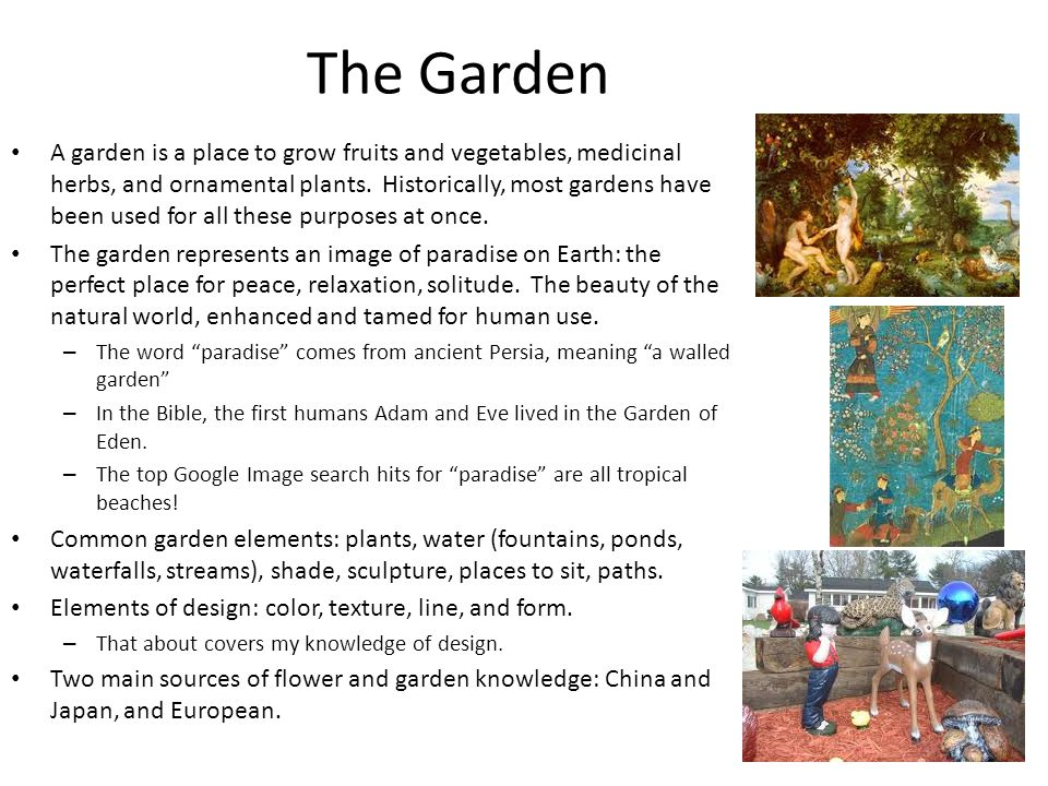 The Garden A garden is a place to grow fruits and vegetables, medicinal herbs, and ornamental plants.