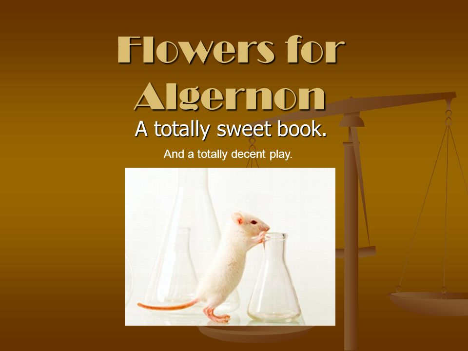 Flowers for Algernon A totally sweet book. A totally sweet book. And a totally decent play.
