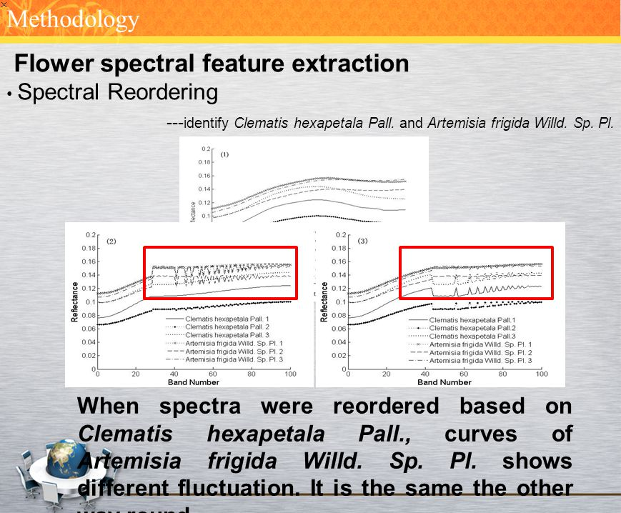 Flower spectral feature extraction Spectral Reordering --- identify Clematis hexapetala Pall. and Artemisia frigida Willd. Sp. Pl. Methodology When sp