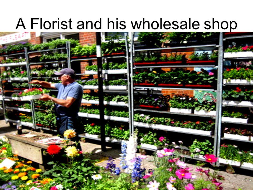 A Florist and his wholesale shop