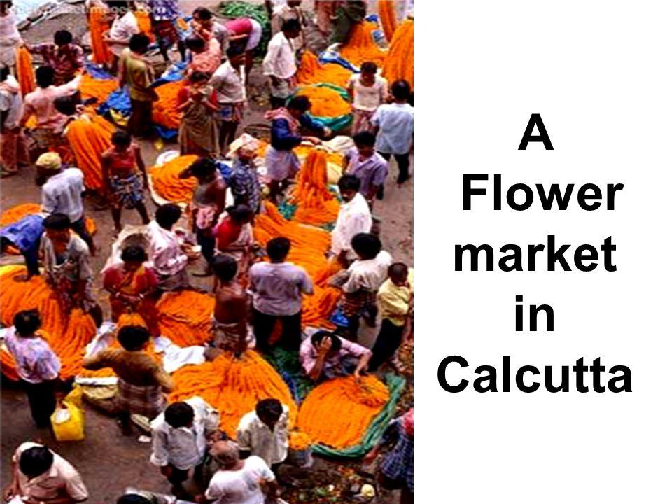 A Flower market in Calcutta