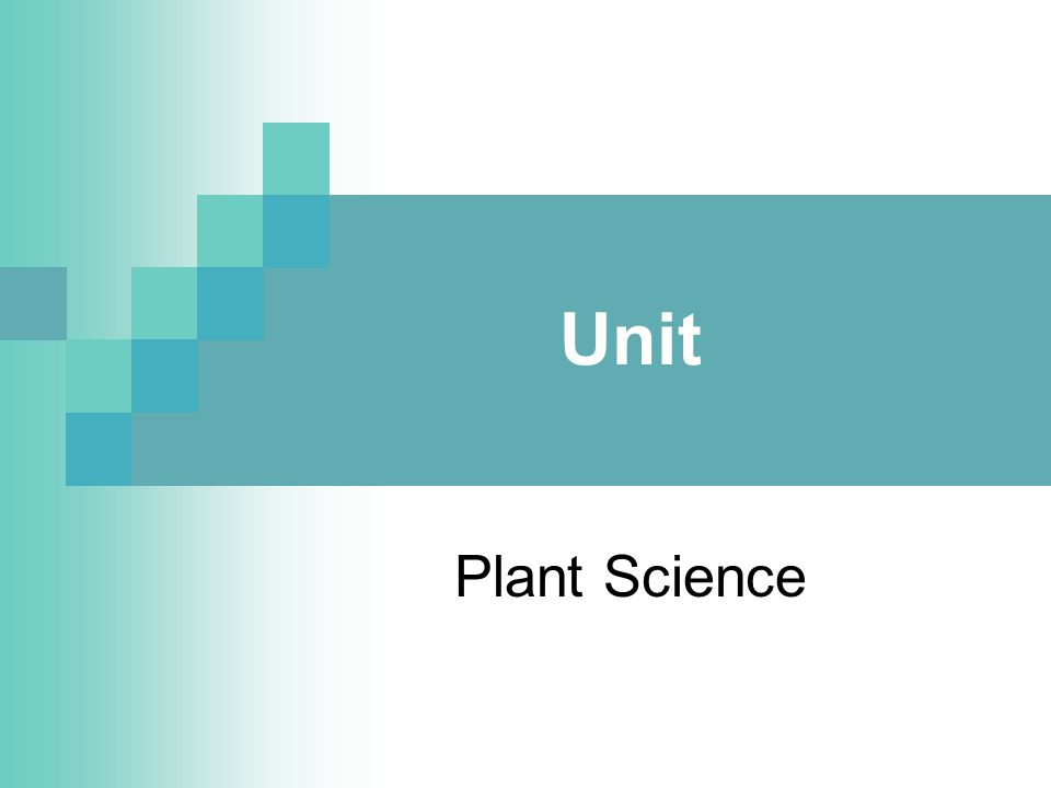 Problem Area Reproduction in Plants