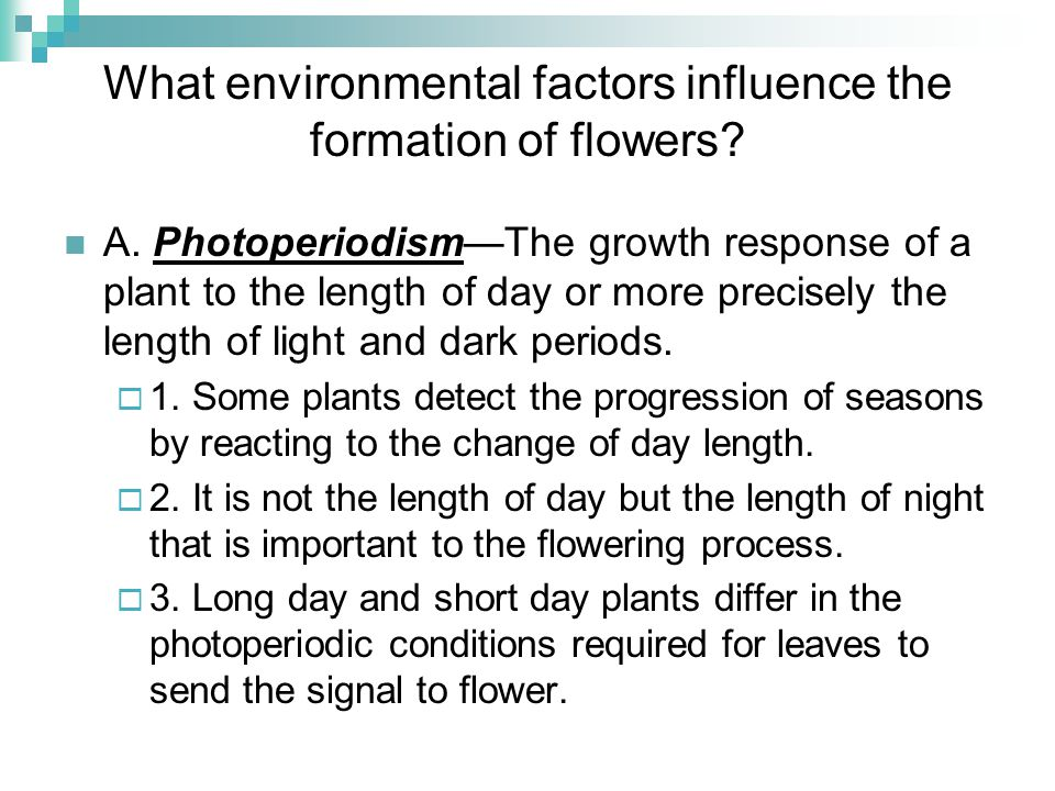 What environmental factors influence the formation of flowers? A. PhotoperiodismThe growth response of a plant to the length of day or more precisely