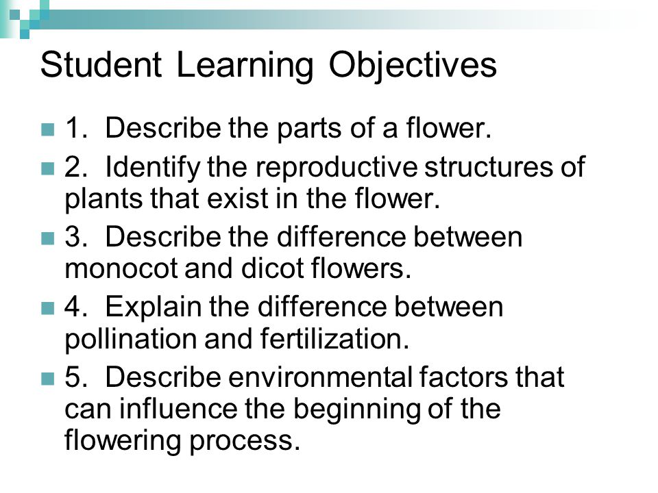 Student Learning Objectives 1. Describe the parts of a flower. 2. Identify the reproductive structures of plants that exist in the flower. 3. Describe