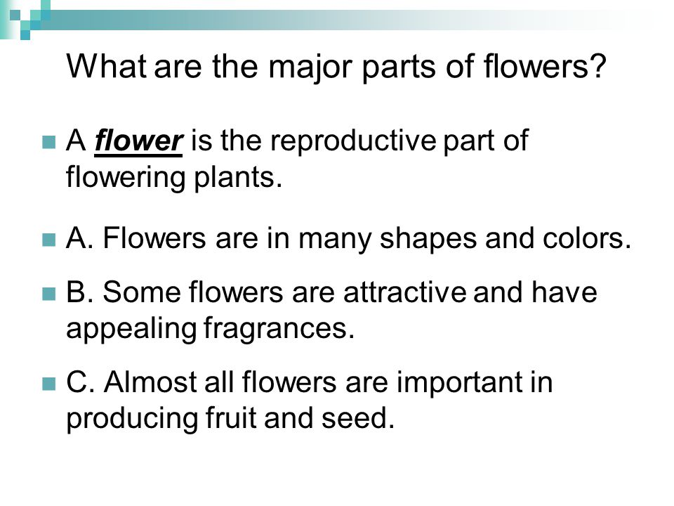 Review/Summary What are the major parts of flowers.
