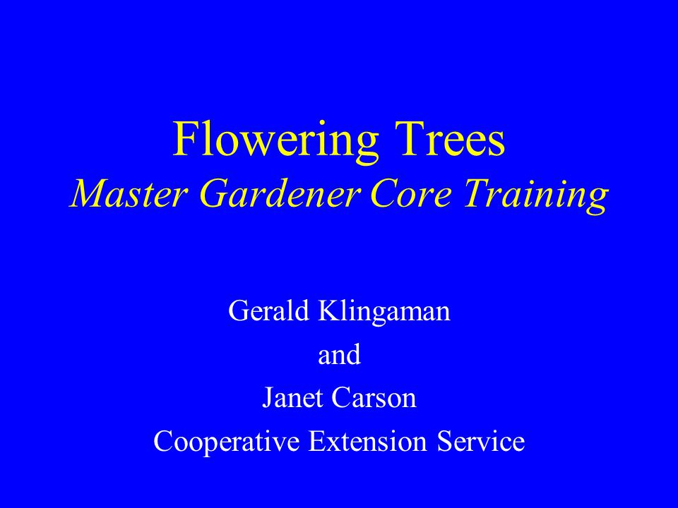 Flowering Trees Master Gardener Core Training Gerald Klingaman and Janet Carson Cooperative Extension Service