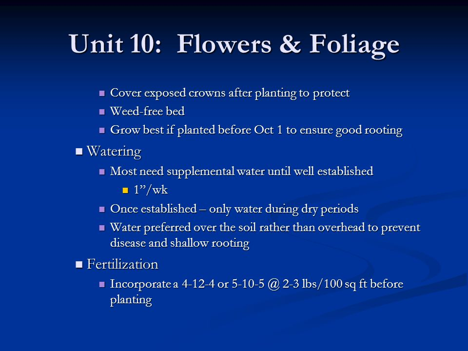Unit 10: Flowers & Foliage Cover exposed crowns after planting to protect Cover exposed crowns after planting to protect Weed-free bed Weed-free bed G