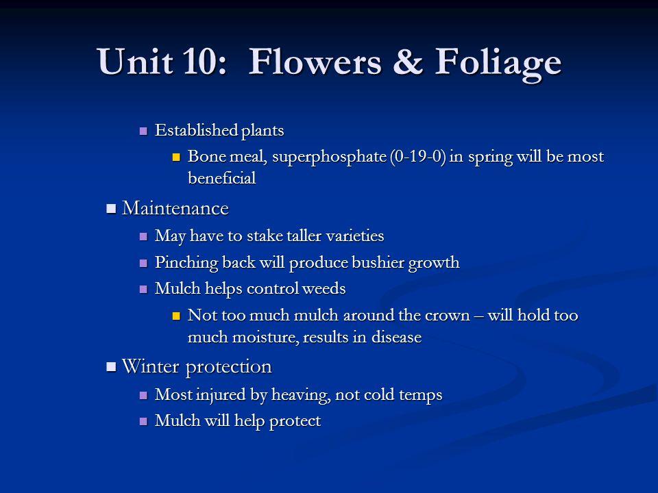 Unit 10: Flowers & Foliage Established plants Established plants Bone meal, superphosphate (0-19-0) in spring will be most beneficial Bone meal, super