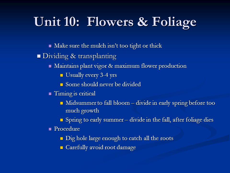 Unit 10: Flowers & Foliage Make sure the mulch isnt too tight or thick Make sure the mulch isnt too tight or thick Dividing & transplanting Dividing &