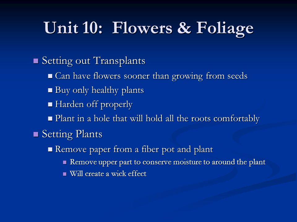 Unit 10: Flowers & Foliage Setting out Transplants Setting out Transplants Can have flowers sooner than growing from seeds Can have flowers sooner tha