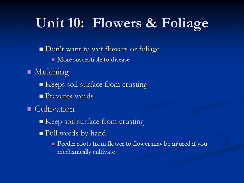 Unit 10: Flowers & Foliage Dont want to wet flowers or foliage Dont want to wet flowers or foliage More susceptible to disease More susceptible to dis