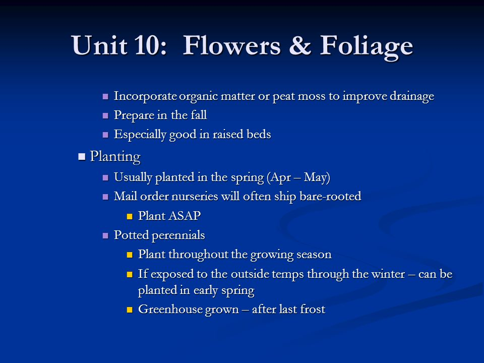Unit 10: Flowers & Foliage Repotting Repotting Repot no more than 2 greater than previous pot Repot no more than 2 greater than previous pot Only after flowers have faded Only after flowers have faded Remove damaged/unhealthy roots Remove damaged/unhealthy roots Propagation Propagation Depends on type of plant Depends on type of plant Generally leaf/stem cuttings Generally leaf/stem cuttings