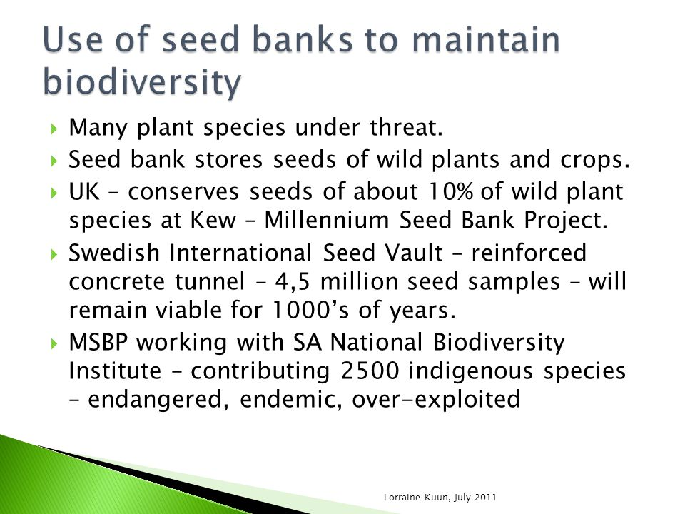 Many plant species under threat. Seed bank stores seeds of wild plants and crops. UK – conserves seeds of about 10% of wild plant species at Kew – Mil