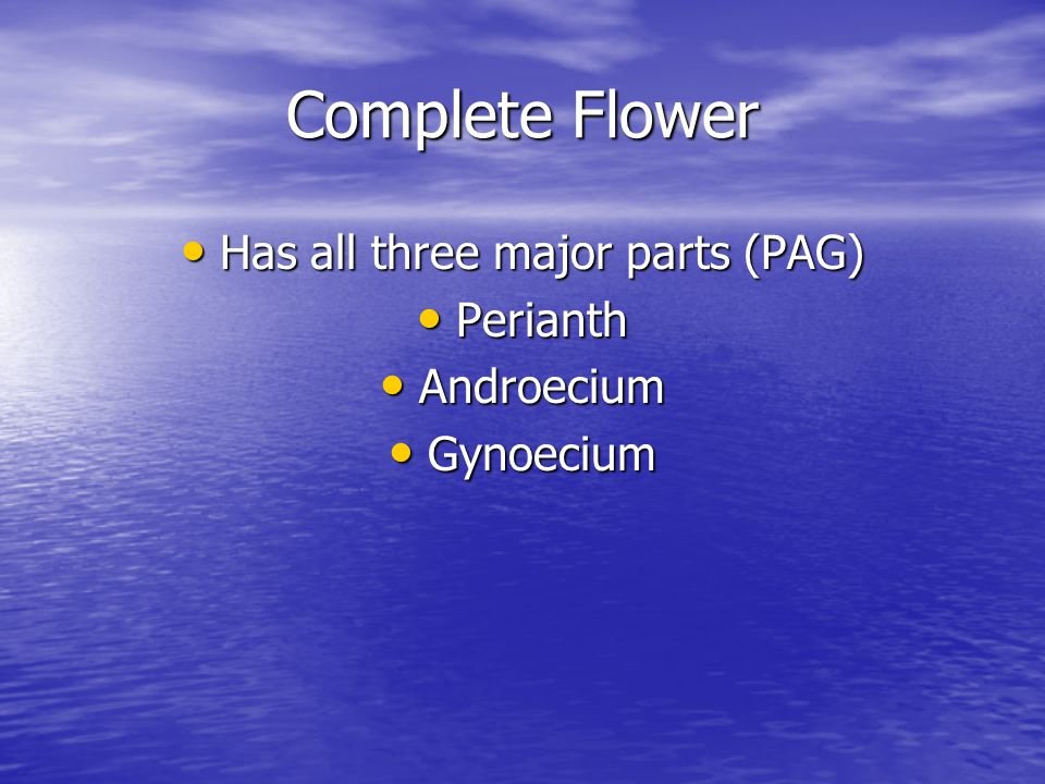 Complete Flower Has all three major parts (PAG) Has all three major parts (PAG) Perianth Perianth Androecium Androecium Gynoecium Gynoecium