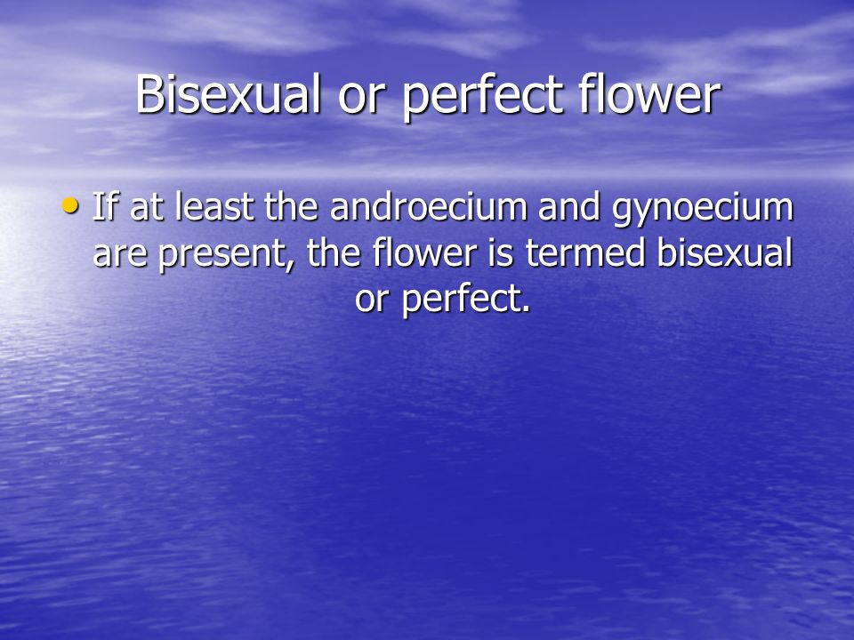 Bisexual or perfect flower If at least the androecium and gynoecium are present, the flower is termed bisexual or perfect.