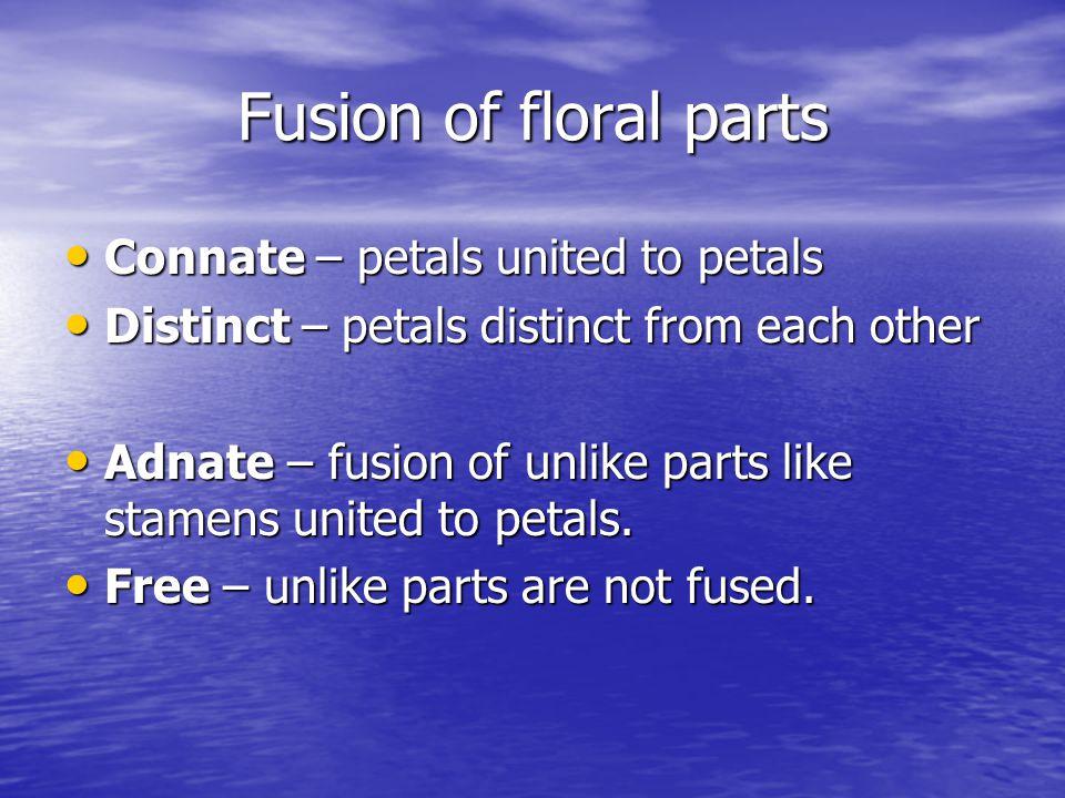 Fusion of floral parts Connate – petals united to petals Connate – petals united to petals Distinct – petals distinct from each other Distinct – petals distinct from each other Adnate – fusion of unlike parts like stamens united to petals.