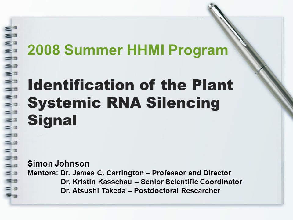 We are using these suppressors to study the silencing signal Our system also uses a stable initiator of RNA silencing By interrupting RNA silencing at distinct steps, these suppressors allow us to examine the signal identity Experimental Setup dsRNA or foldback siRNA Duplexes siRNA/AGO Complexes P19 Fny2b Successful Silencing AGO AGO DICER