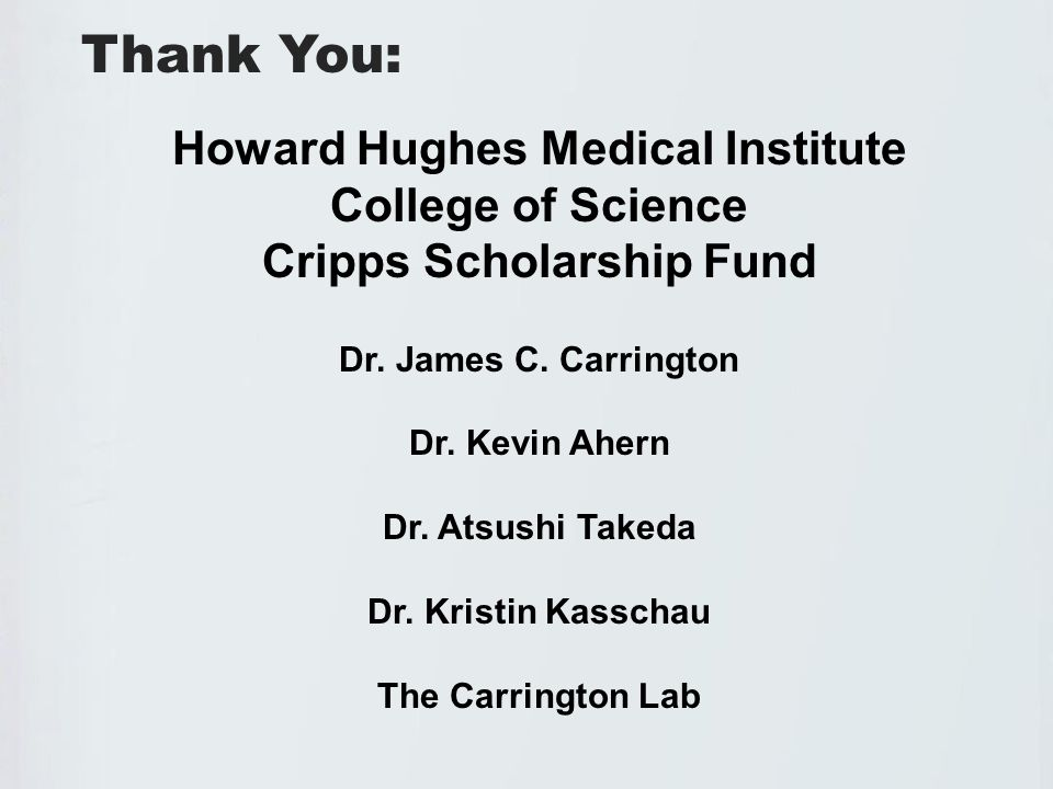 Thank You: Howard Hughes Medical Institute College of Science Cripps Scholarship Fund Dr.