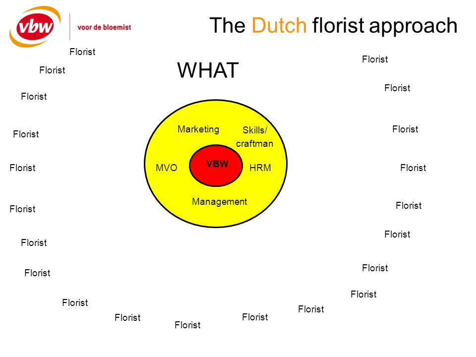 The Dutch florist approach VBW Marketing Management HRMMVO Skills/ craftman Florist WHAT