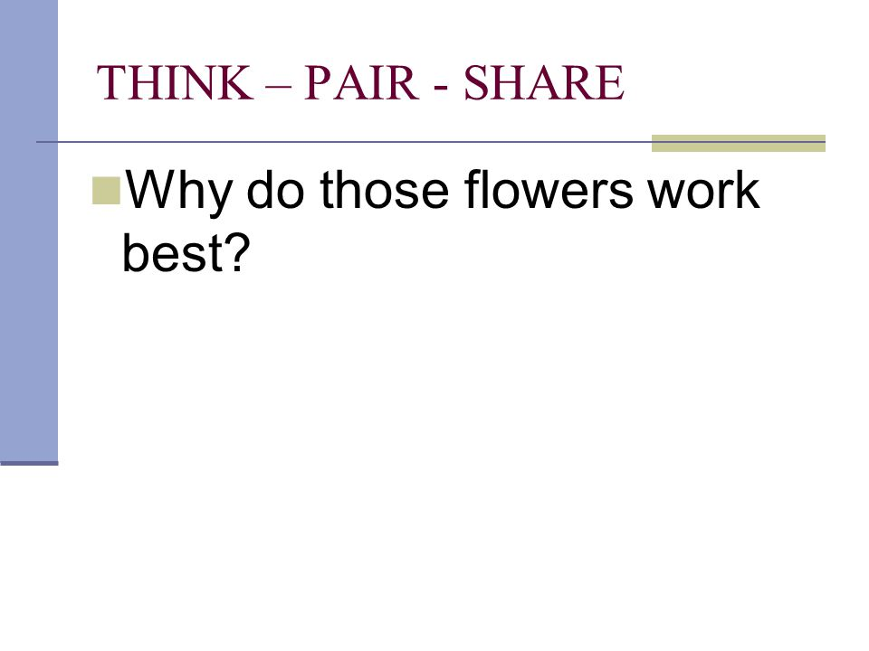 THINK – PAIR - SHARE Why do those flowers work best?