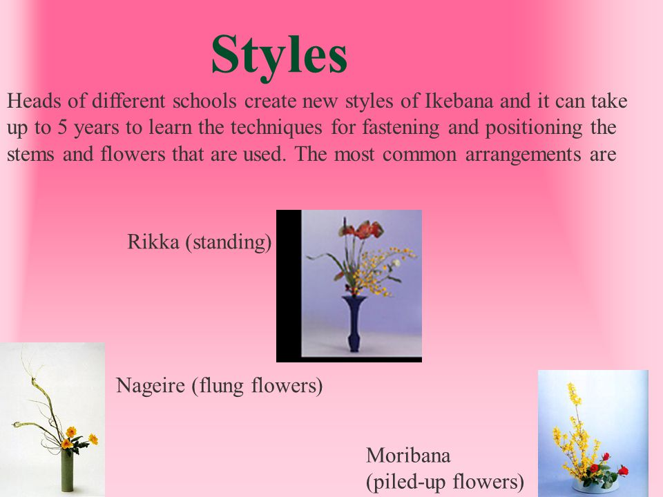 Rikka Also known as Shoka or Seika, this form of arrangement uses tall vases and positions the flowers to highlight vertical lines.