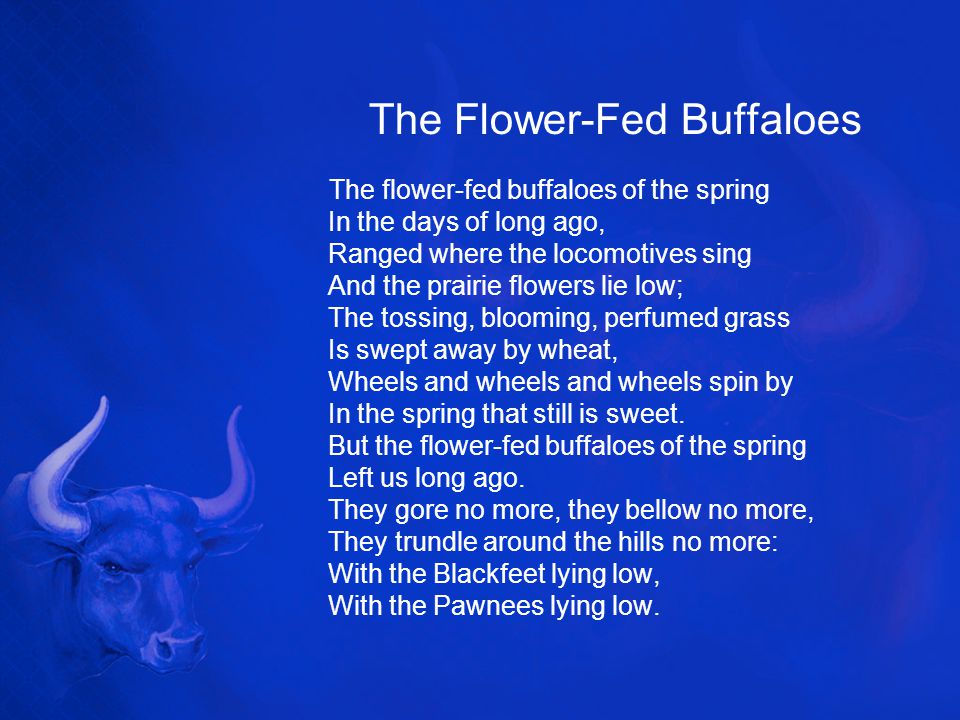 The Flower-Fed Buffaloes The flower-fed buffaloes of the spring In the days of long ago, Ranged where the locomotives sing And the prairie flowers lie low; The tossing, blooming, perfumed grass Is swept away by wheat, Wheels and wheels and wheels spin by In the spring that still is sweet.