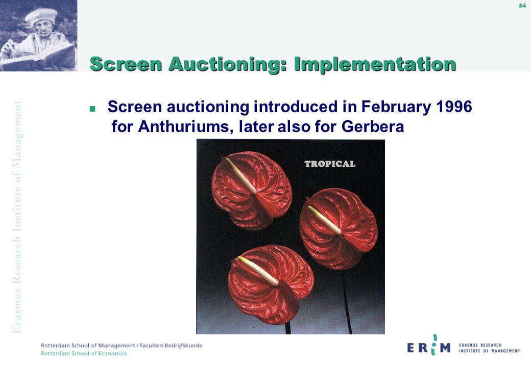 34 Screen Auctioning: Implementation n Screen auctioning introduced in February 1996 for Anthuriums, later also for Gerbera