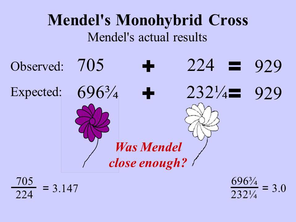 224 Mendel s Monohybrid Cross 705 Mendel s actual results += 929 705 224 = 3.147 Was Mendel close enough.