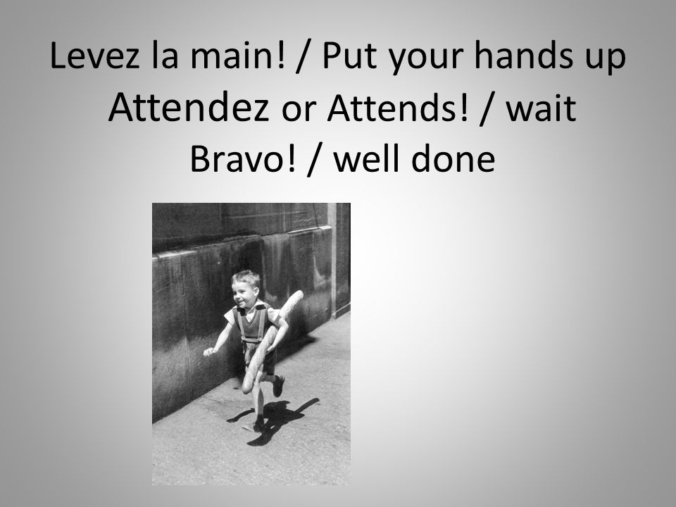 Levez la main! / Put your hands up Attendez or Attends! / wait Bravo! / well done