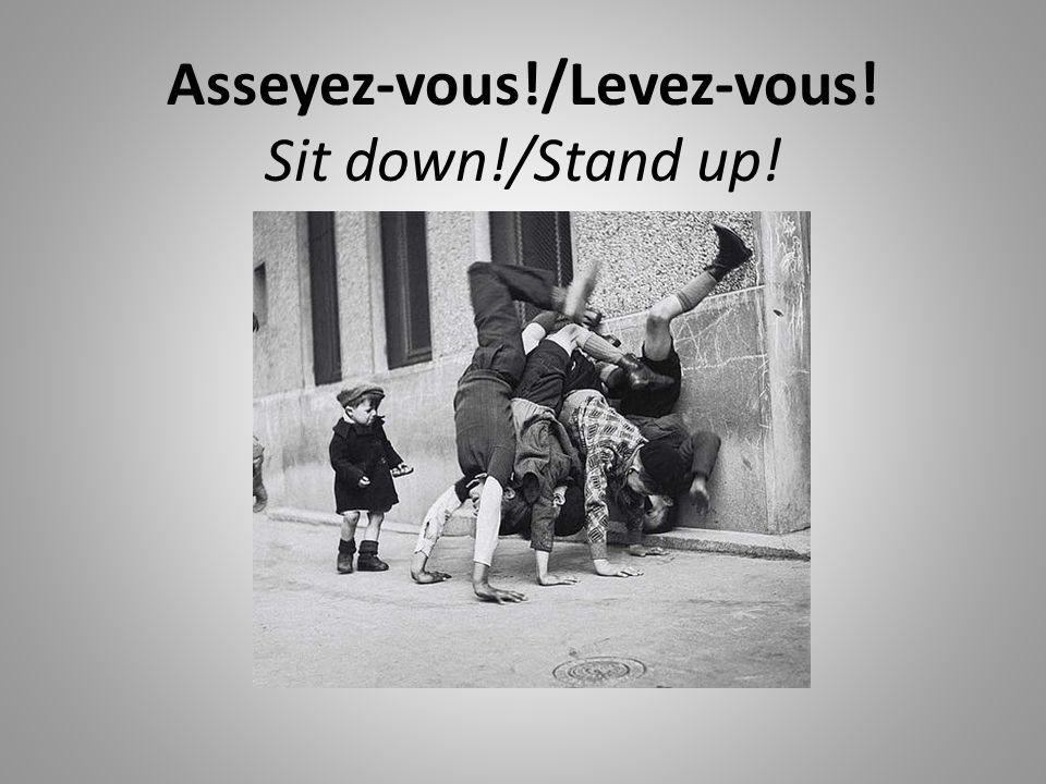 Asseyez-vous!/Levez-vous! Sit down!/Stand up!