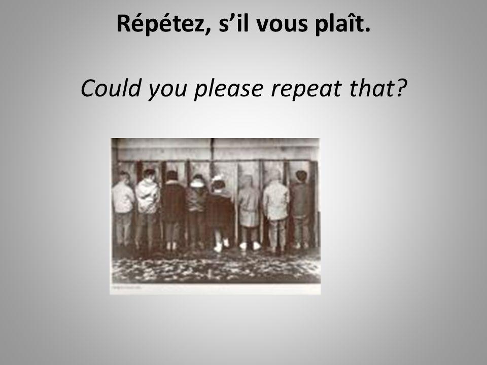 Répétez, sil vous plaît. Could you please repeat that?