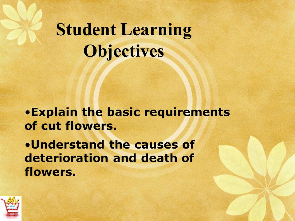 Student Learning Objectives Explain the basic requirements of cut flowers. Understand the causes of deterioration and death of flowers.