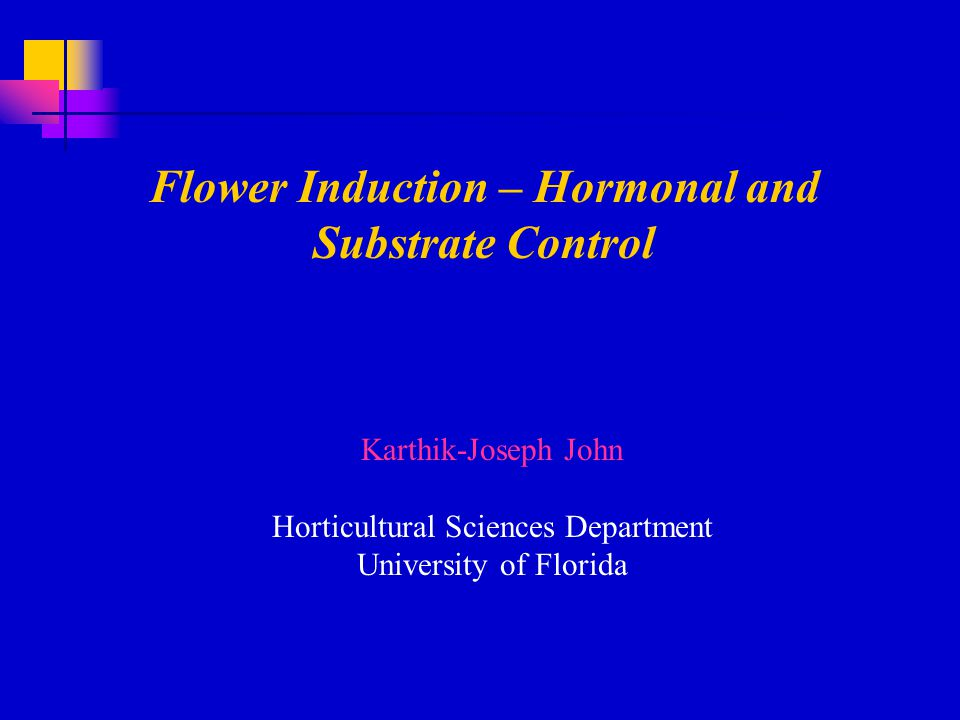 Flower Induction – Hormonal and Substrate Control Karthik-Joseph John Horticultural Sciences Department University of Florida