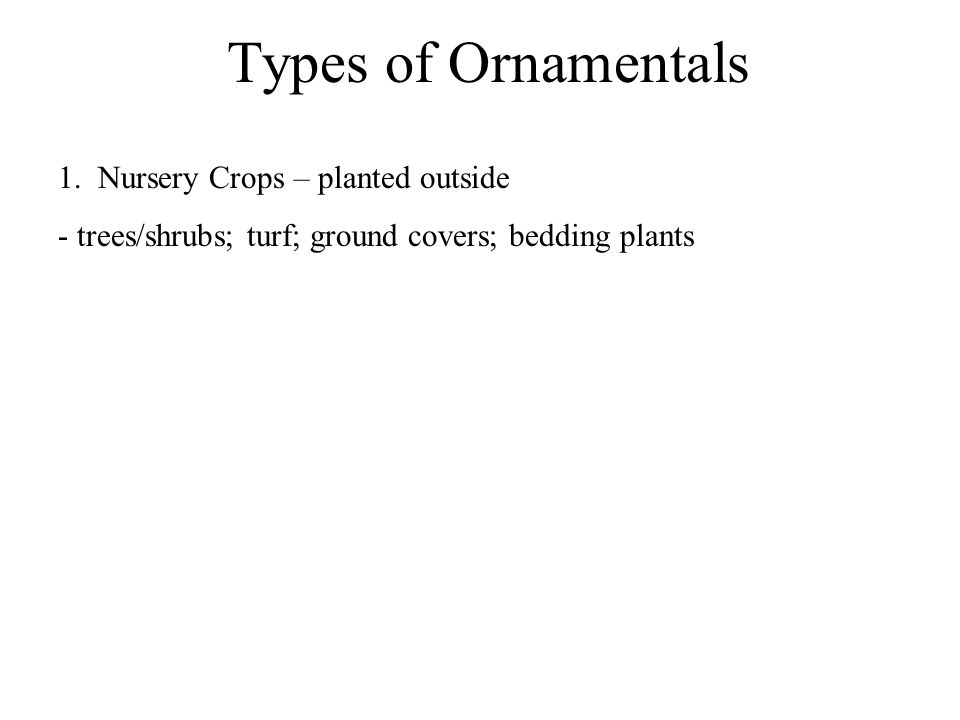 Types of Ornamentals 1. Nursery Crops – planted outside - trees/shrubs; turf; ground covers; bedding plants