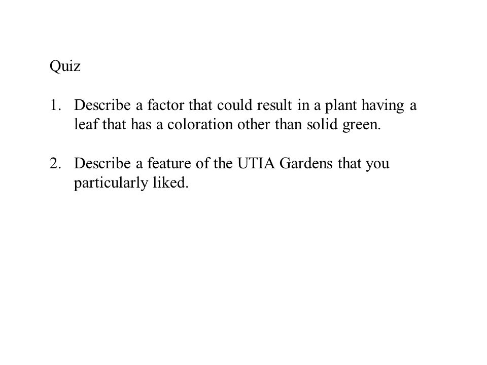 1.Describe a factor that could result in a plant having a leaf that has a coloration other than solid green. 2.Describe a feature of the UTIA Gardens